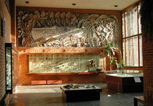Общий вид третьего зала палеонтологического музея