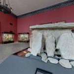 Еще каменные плиты в историческом музее