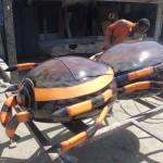 Гроб в форме насекомого в музее смерти